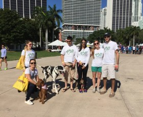 Robert N. Hartsell, P.A. Animal Lawyers Walk Dogs for a Cause